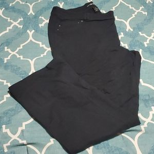 Lane Bryant Black Stretchy Pants 24W Tall